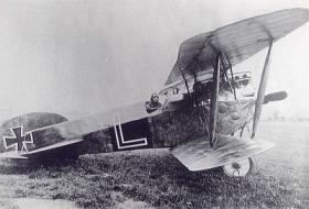 Phoenix D.II истребитель (Феникс D.II)