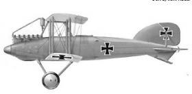Albatros J 1 ( Альбатрос J 1 )