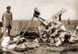 Герхард Физелер рядом с разбитым самолетом.